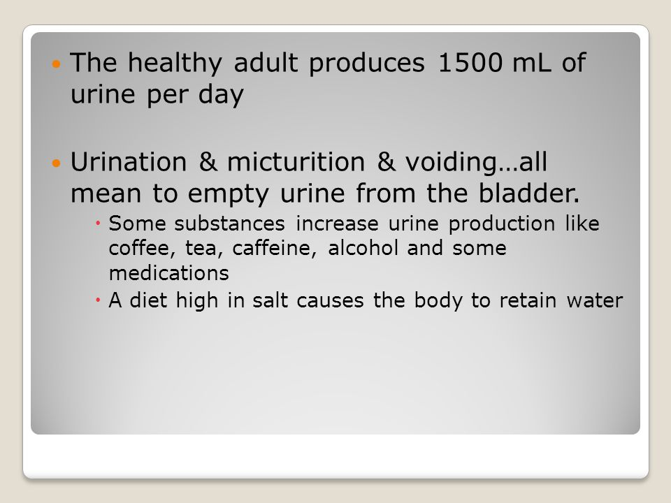 The healthy adult produces 1500 mL of urine per day