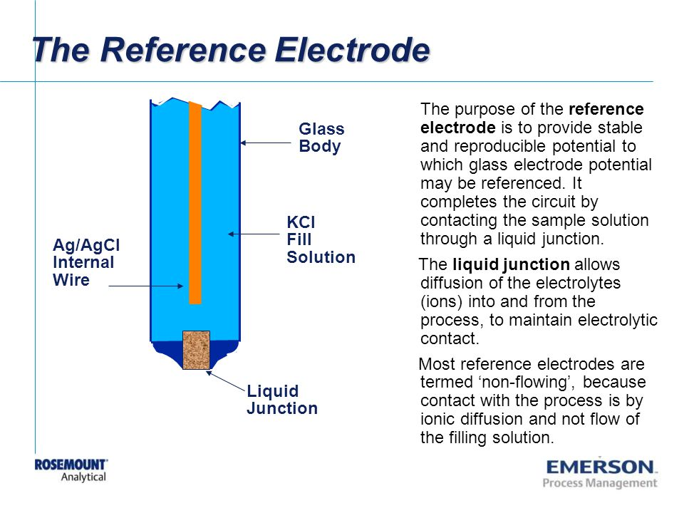 The Reference Electrode