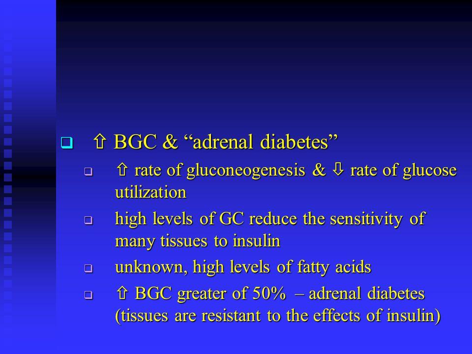  BGC & adrenal diabetes