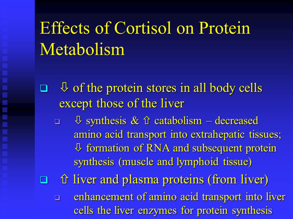 Effects of Cortisol on Protein Metabolism