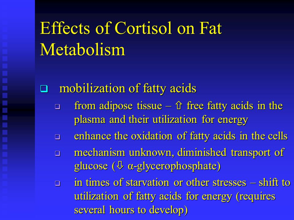 Effects of Cortisol on Fat Metabolism