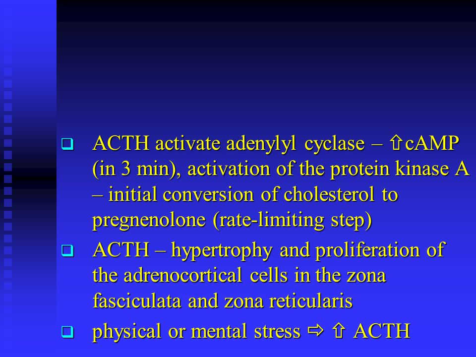 ACTH activate adenylyl cyclase – cAMP (in 3 min), activation of the protein kinase A – initial conversion of cholesterol to pregnenolone (rate-limiting step)