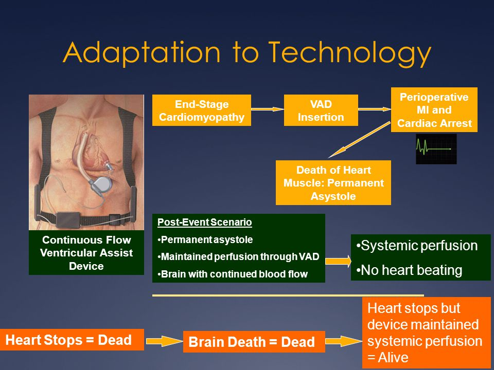 Adaptation to Technology