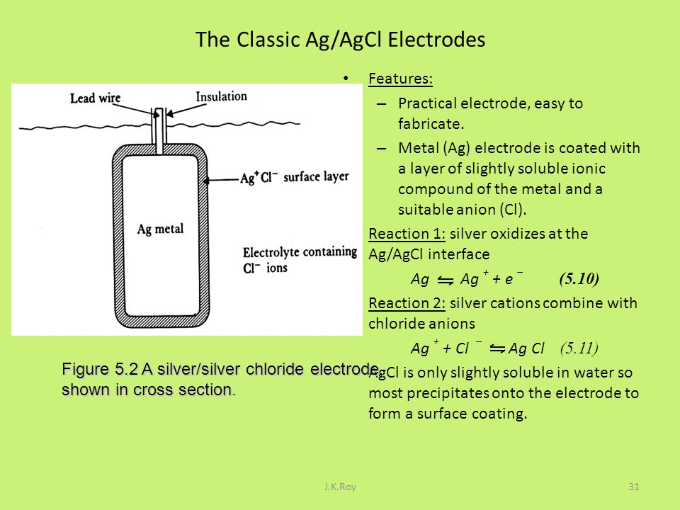The Classic Ag/AgCl Electrodes