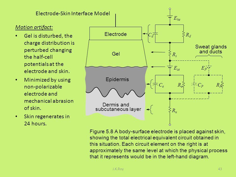 Electrode-Skin Interface Model
