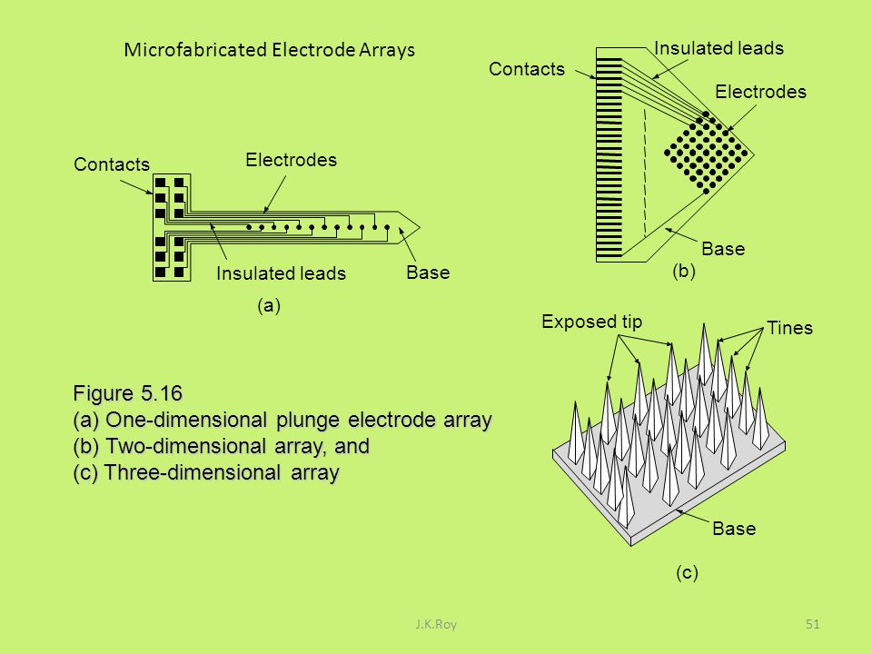 Microfabricated Electrode Arrays