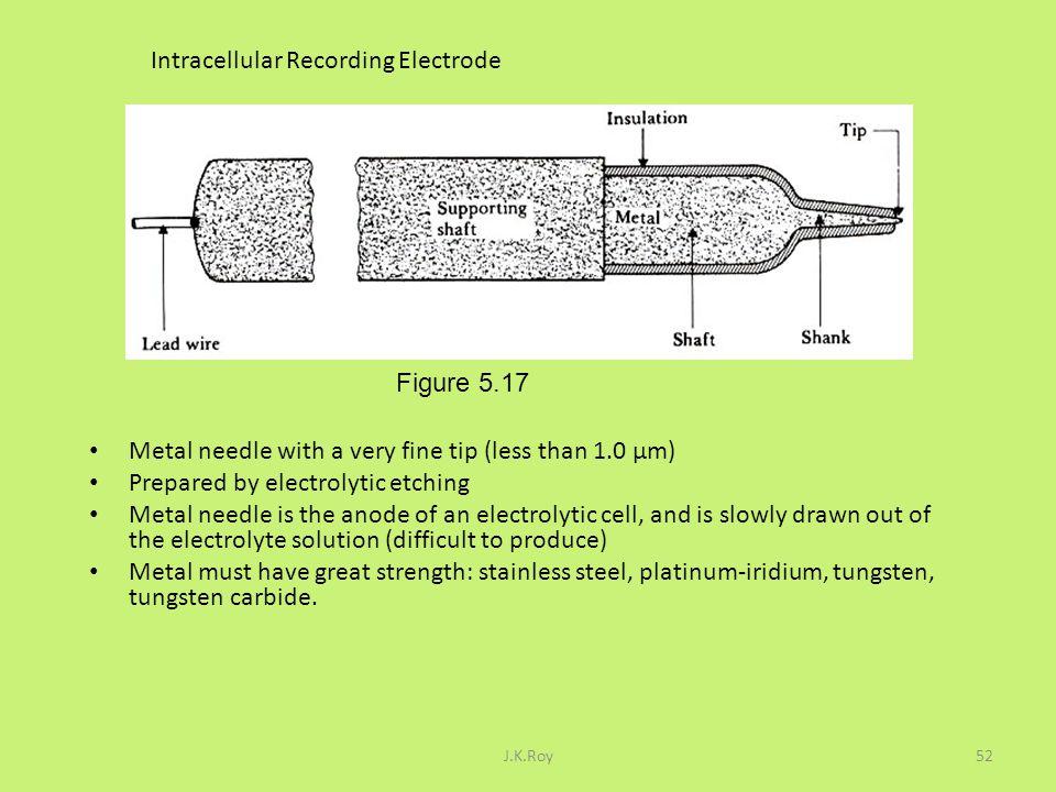Intracellular Recording Electrode