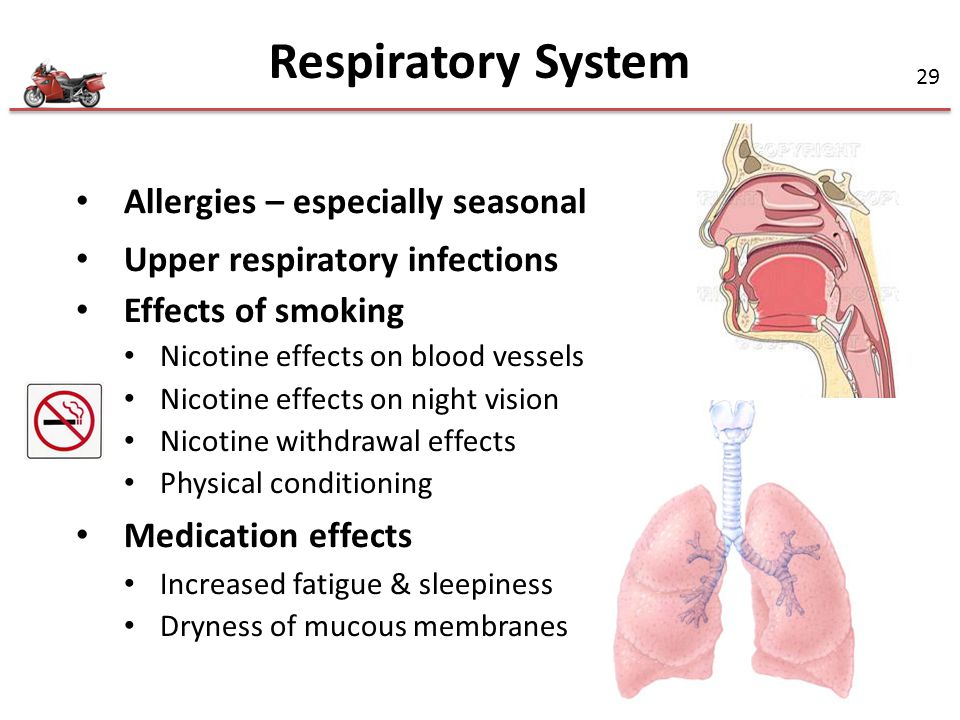 Respiratory System Allergies – especially seasonal
