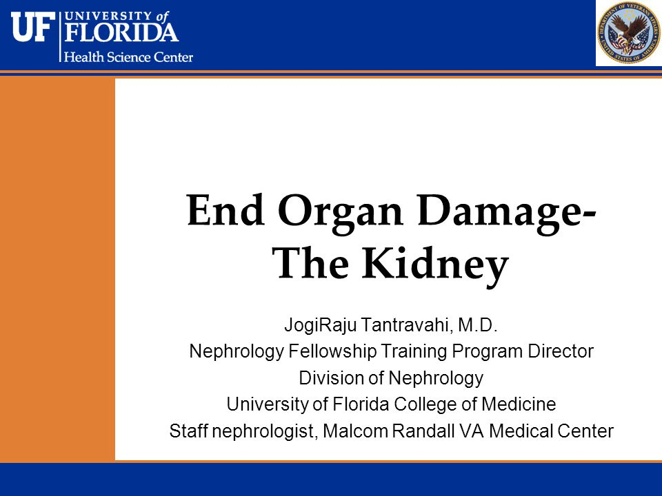 End Organ Damage- The Kidney