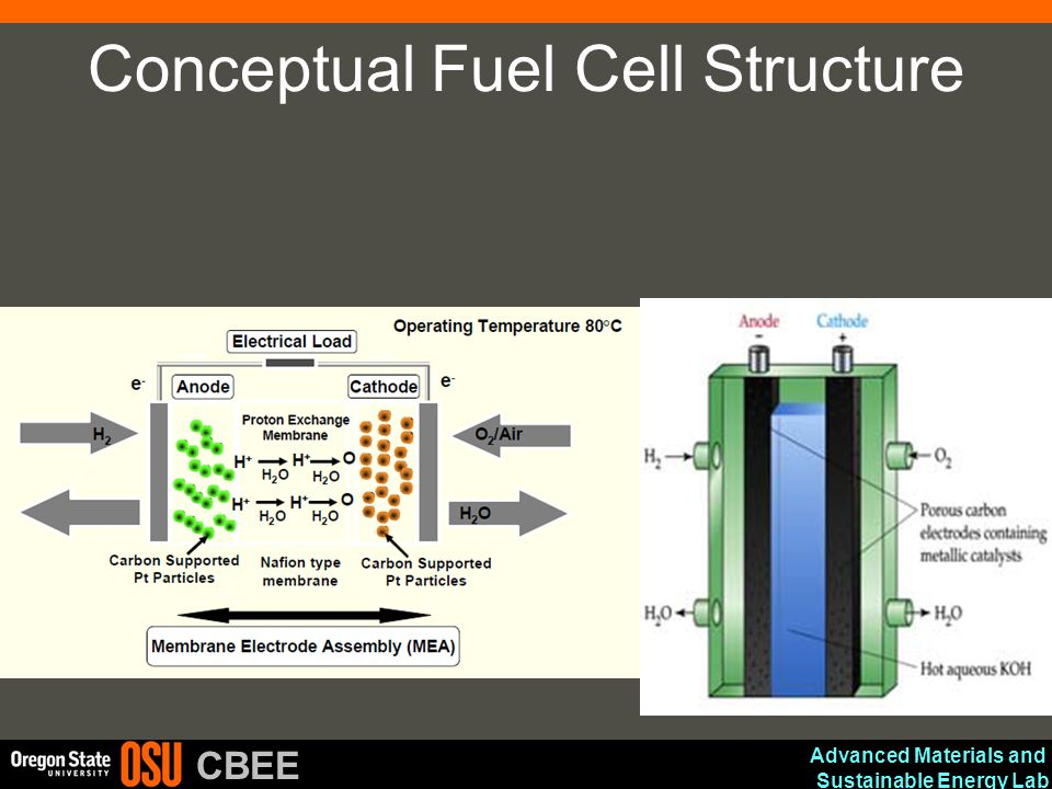 Conceptual Fuel Cell Structure