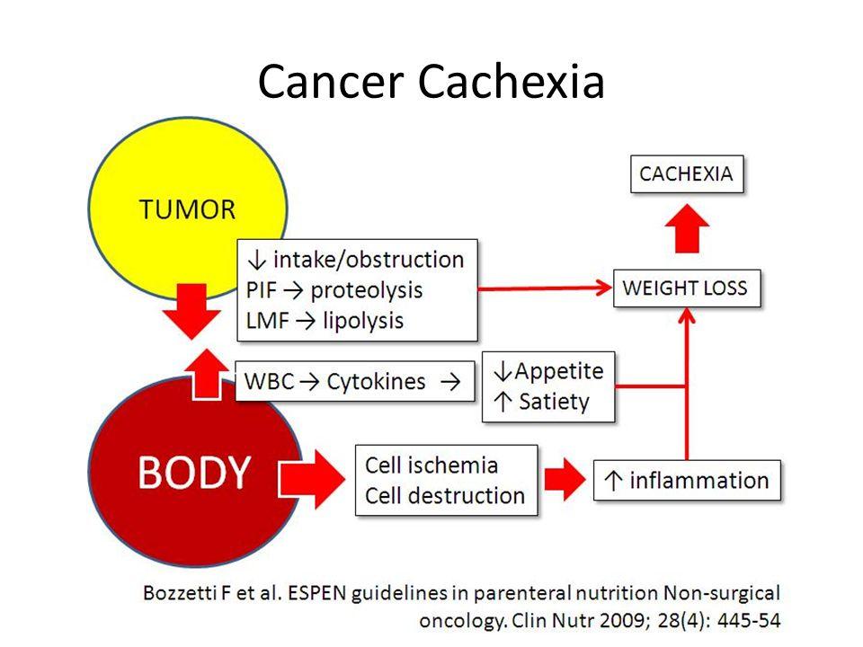 Cancer Cachexia
