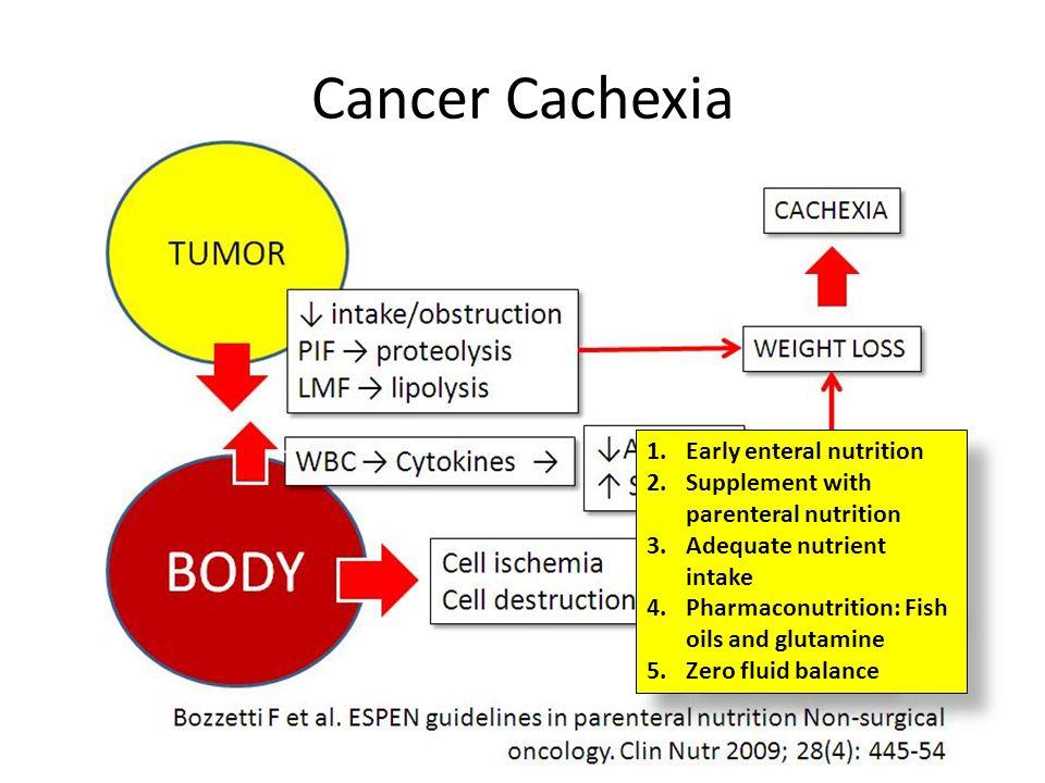 Cancer Cachexia Early enteral nutrition