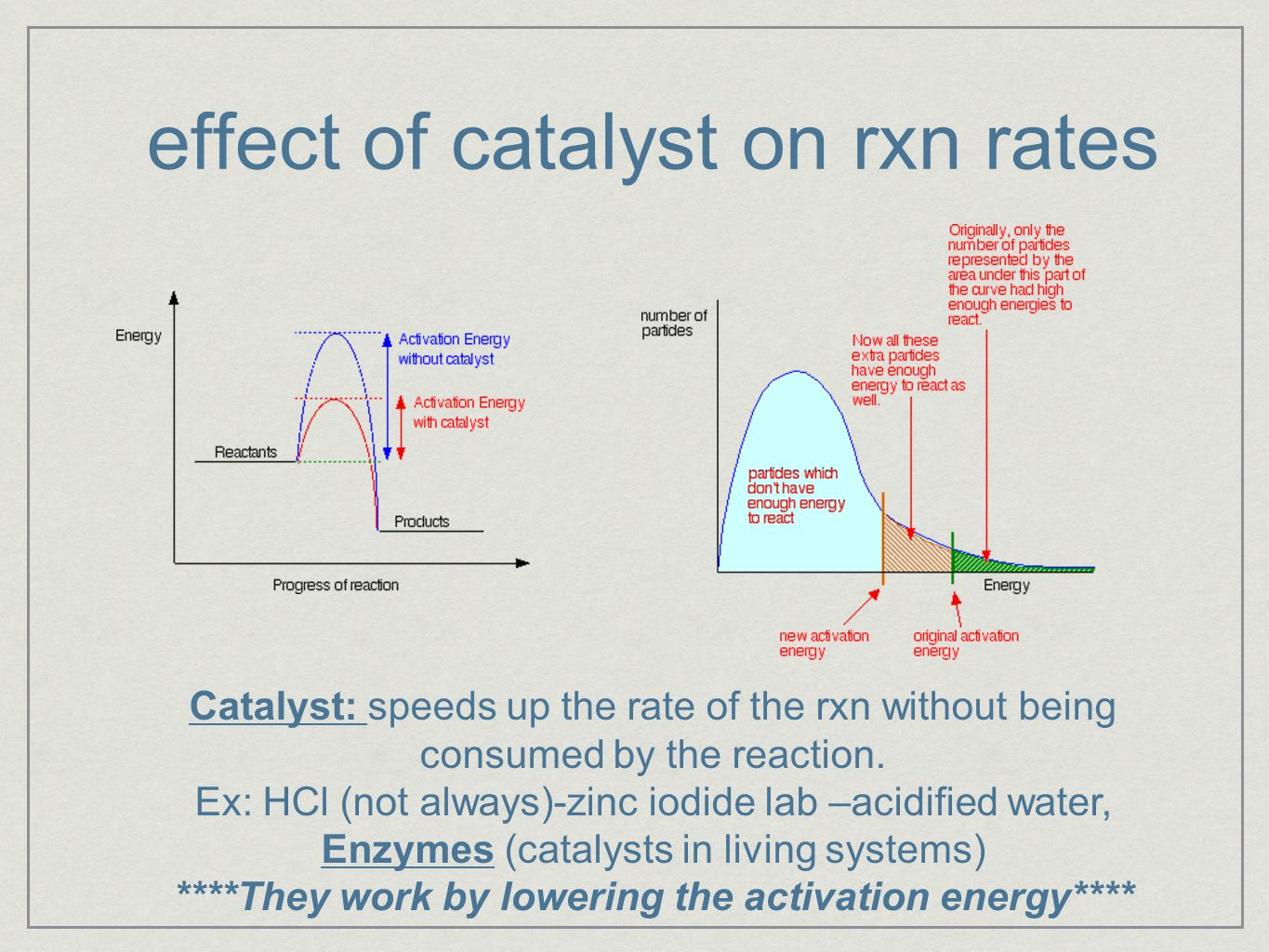 effect of catalyst on rxn rates