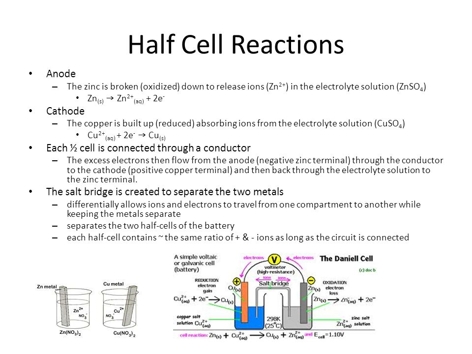 Half Cell Reactions Anode Cathode