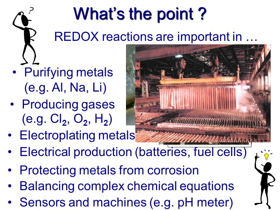 What's the point REDOX reactions are important in …