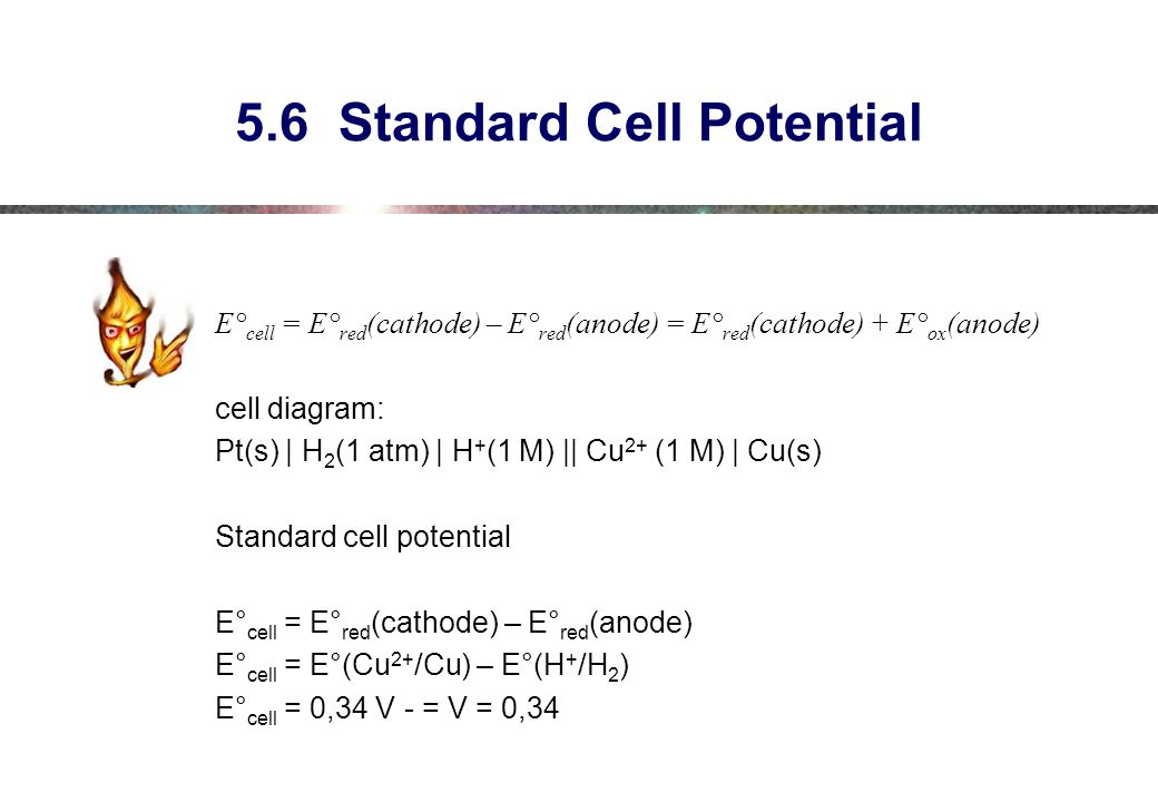 5.6 Standard Cell Potential