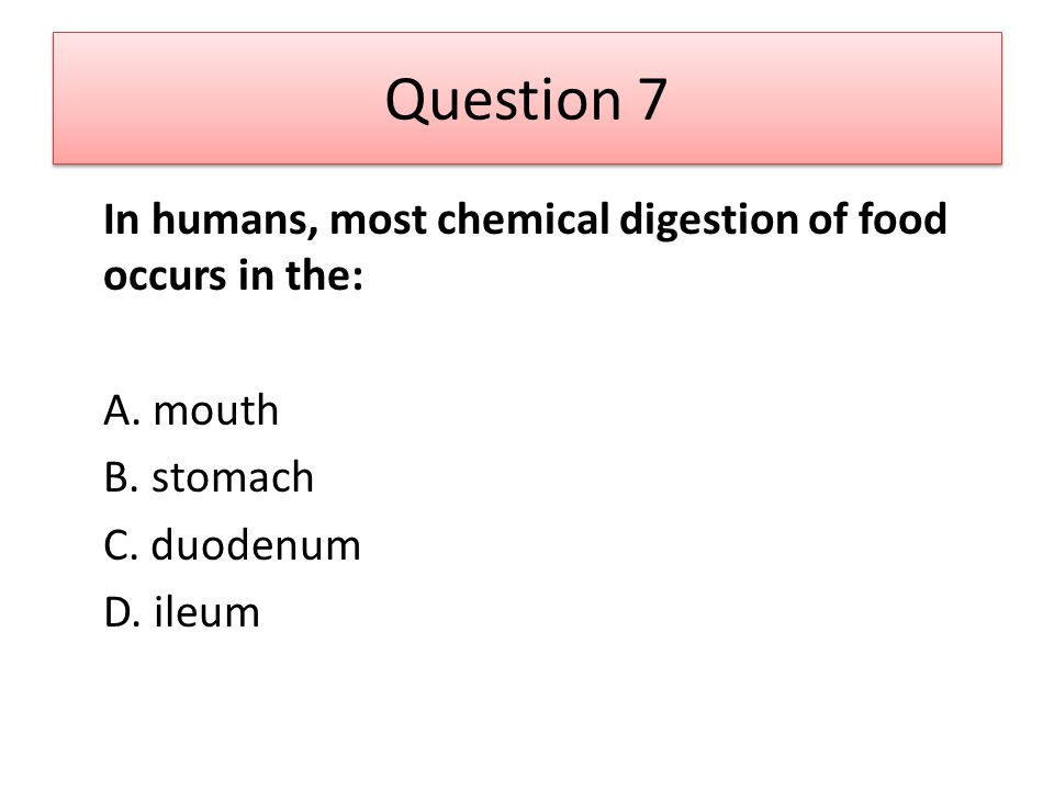 Question 7 In humans, most chemical digestion of food occurs in the: