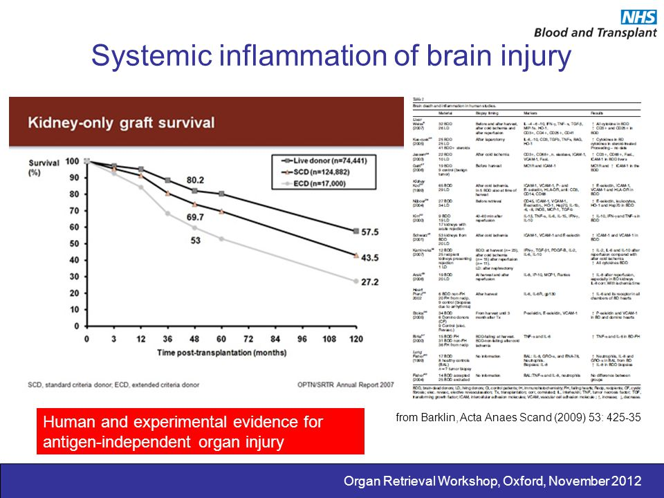 Systemic inflammation of brain injury