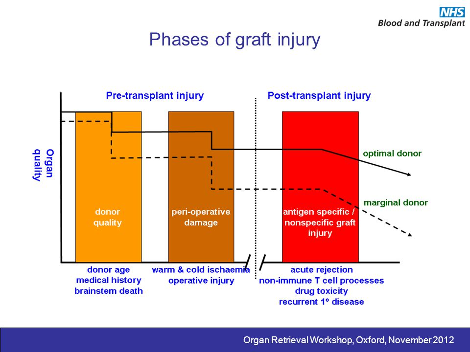 Phases of graft injury Organ Retrieval Workshop, Oxford, November 2012