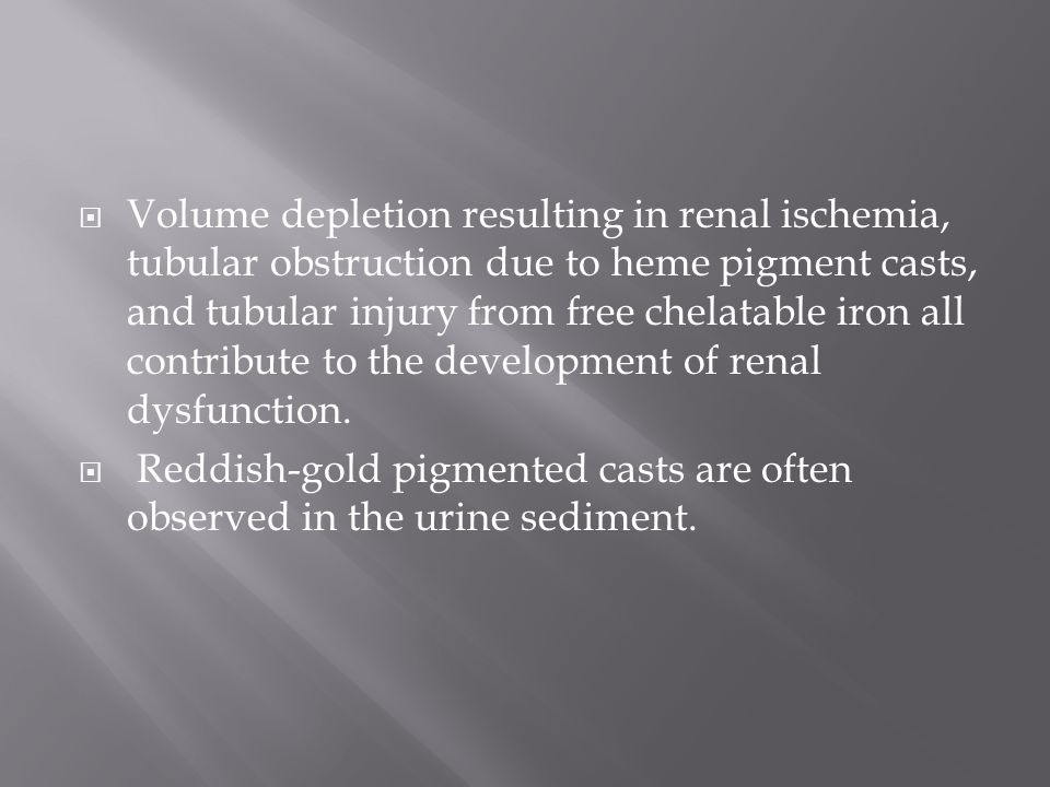 Volume depletion resulting in renal ischemia, tubular obstruction due to heme pigment casts, and tubular injury from free chelatable iron all contribute to the development of renal dysfunction.