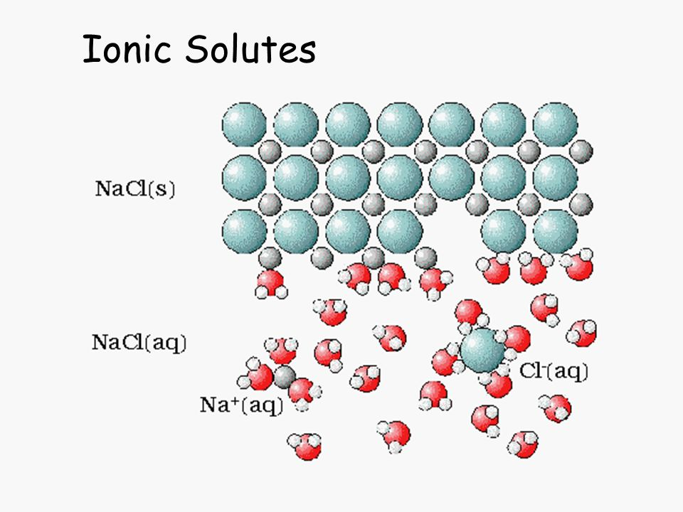 Ionic Solutes