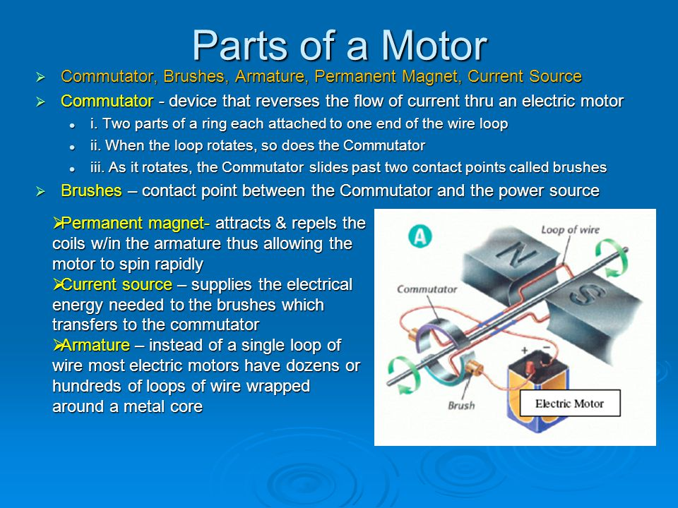 Parts of a Motor Commutator, Brushes, Armature, Permanent Magnet, Current Source.