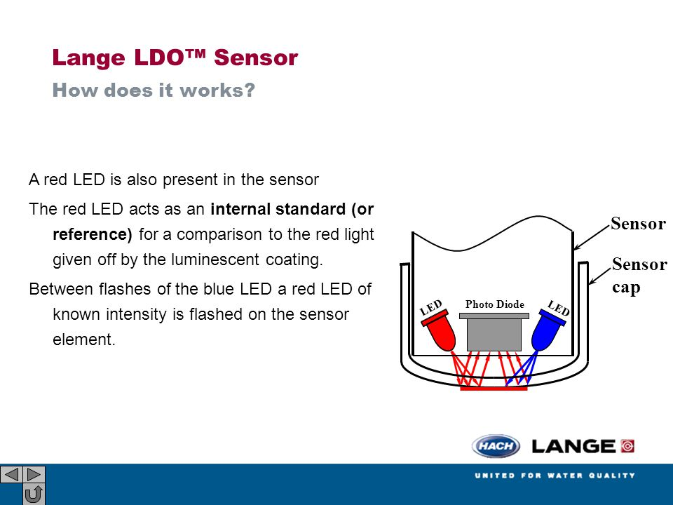Lange LDO™ Sensor How does it works Sensor cap