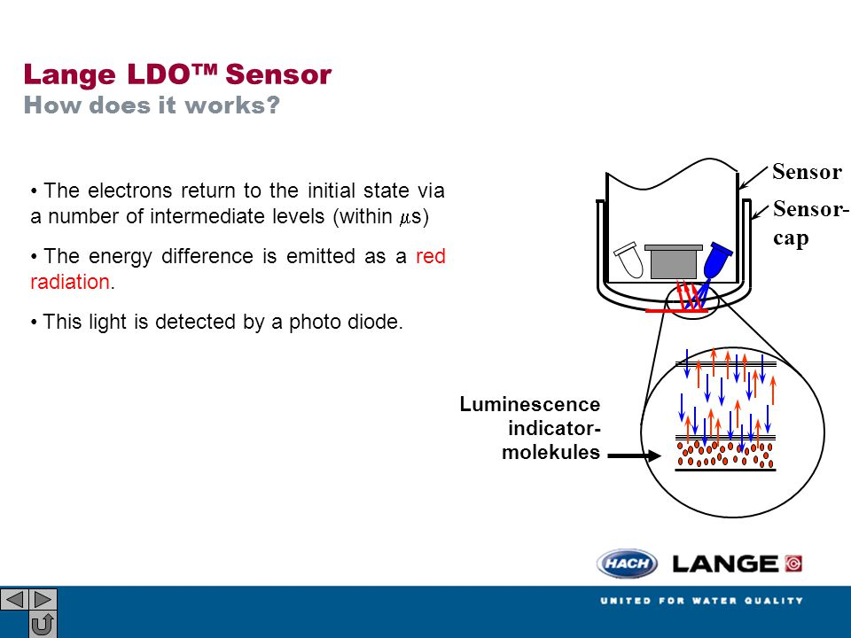 Lange LDO™ Sensor How does it works Sensor Sensor- cap