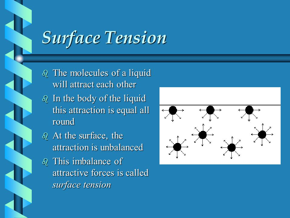 Surface Tension The molecules of a liquid will attract each other