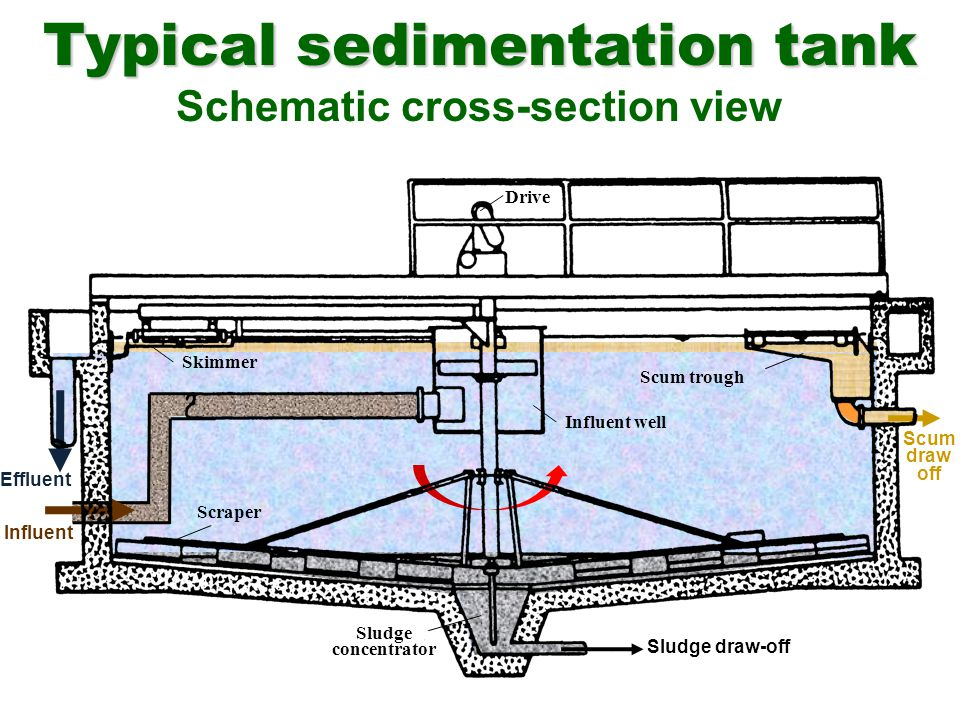 Typical sedimentation tank