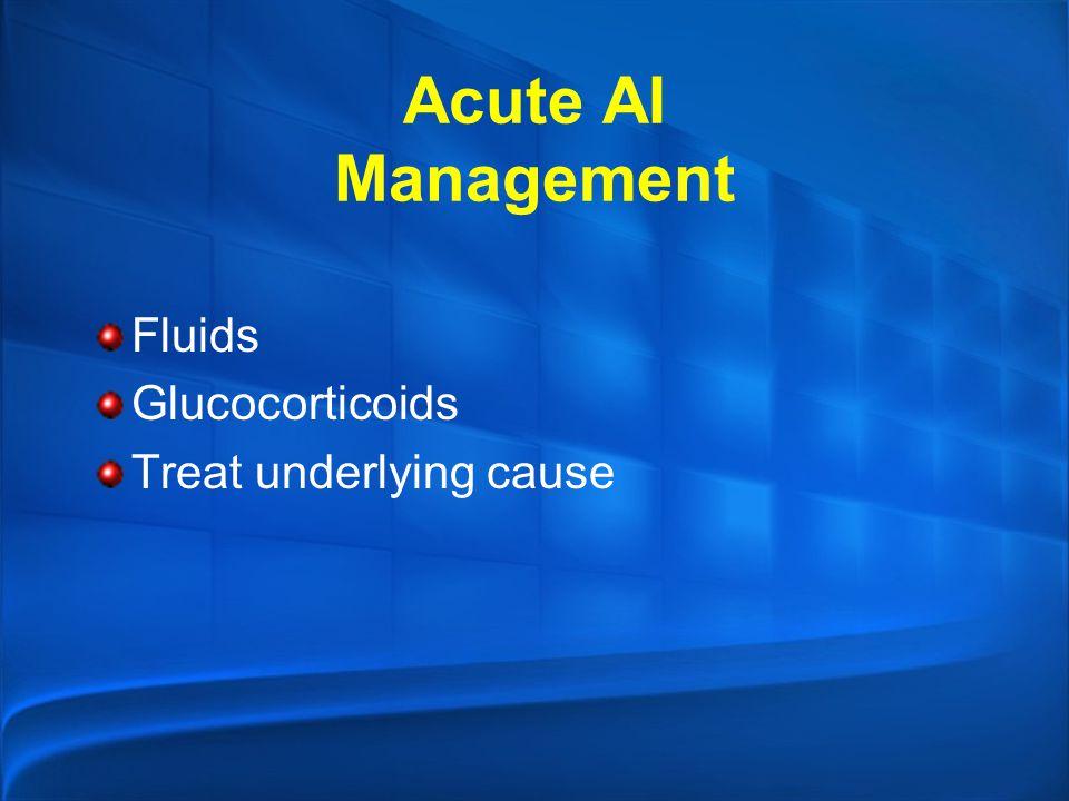 Acute AI Management Fluids Glucocorticoids Treat underlying cause