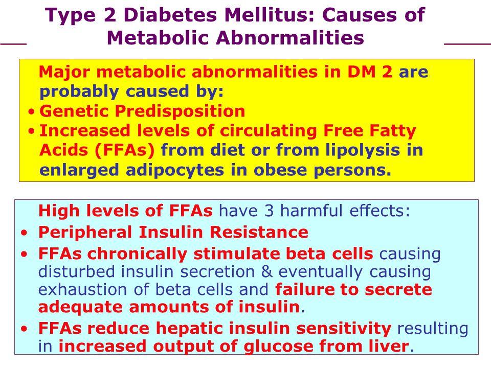 Type 2 Diabetes Mellitus: Causes of Metabolic Abnormalities
