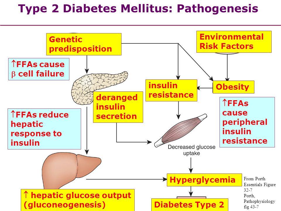 Type 2 Diabetes Mellitus: Pathogenesis