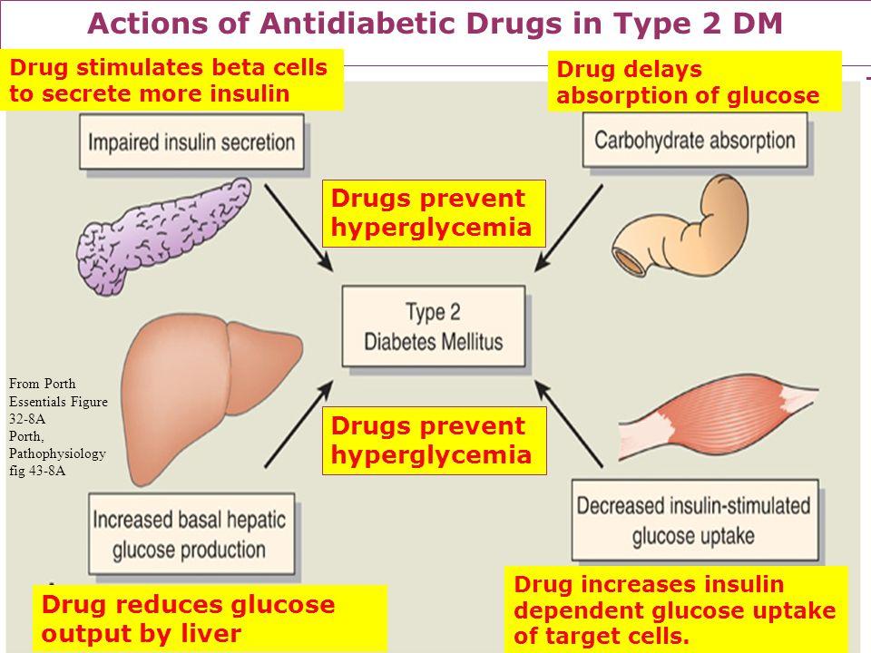 Actions of Antidiabetic Drugs in Type 2 DM