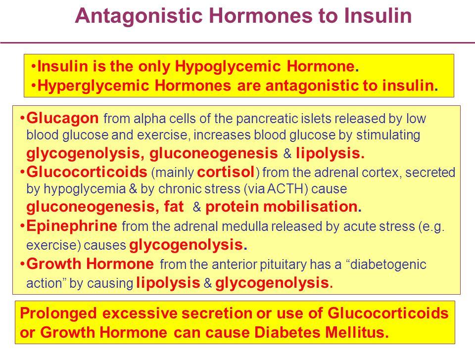 Antagonistic Hormones to Insulin