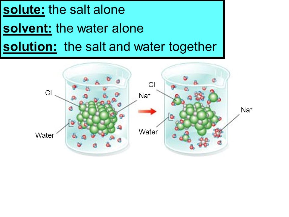 solvent: the water alone solution: the salt and water together