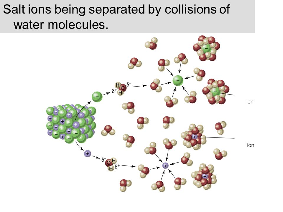 Salt ions being separated by collisions of water molecules.