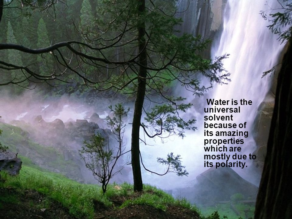 Water is the universal solvent because of its amazing properties which are mostly due to its polarity.