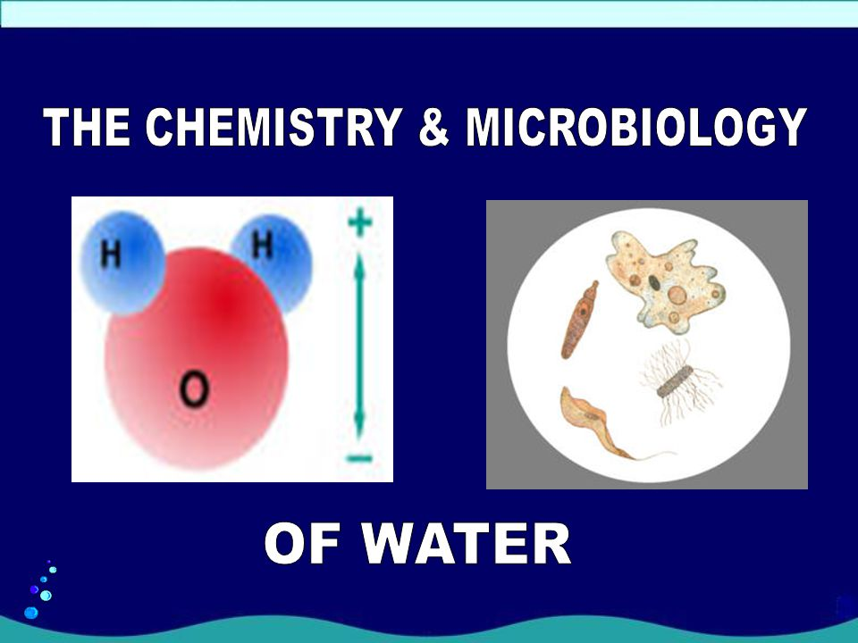 THE CHEMISTRY & MICROBIOLOGY