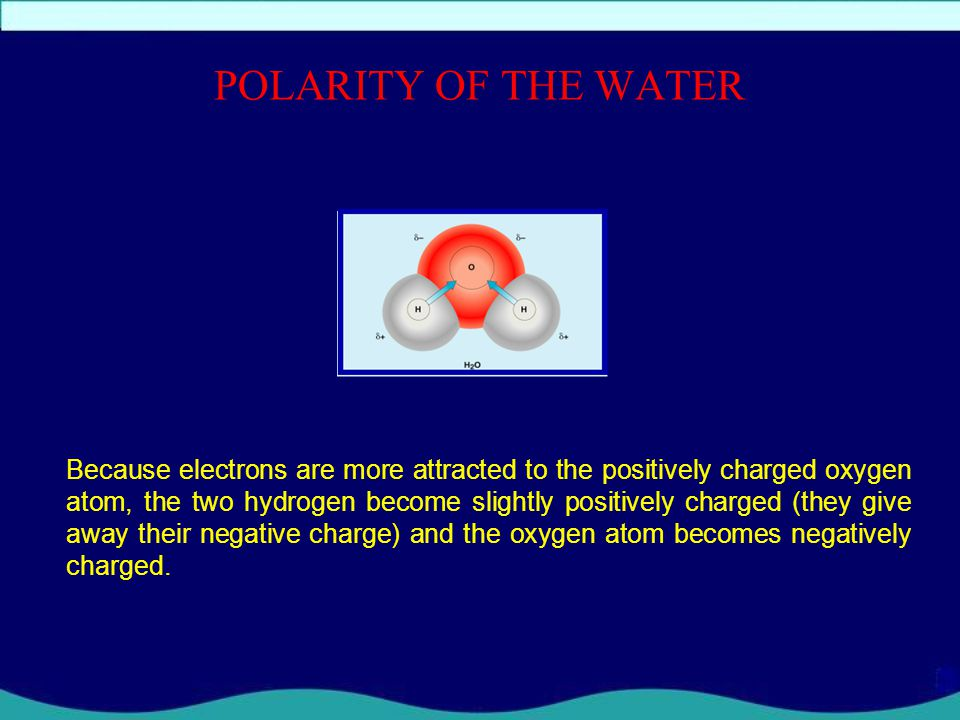 POLARITY OF THE WATER