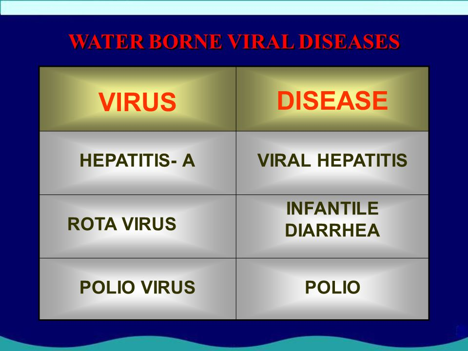 WATER BORNE VIRAL DISEASES