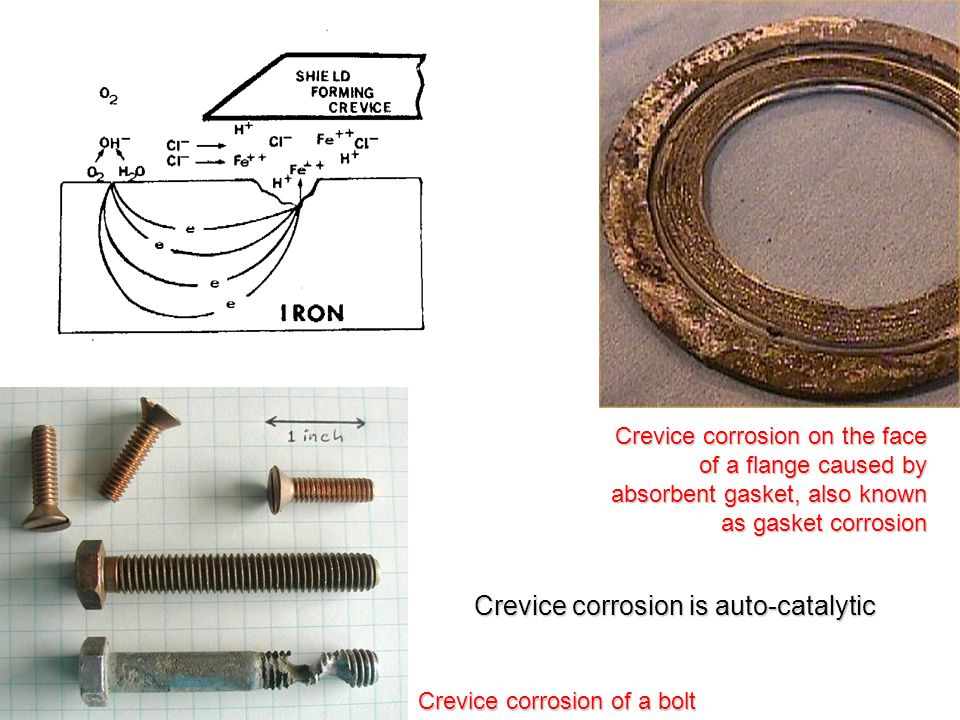 Crevice corrosion is auto-catalytic