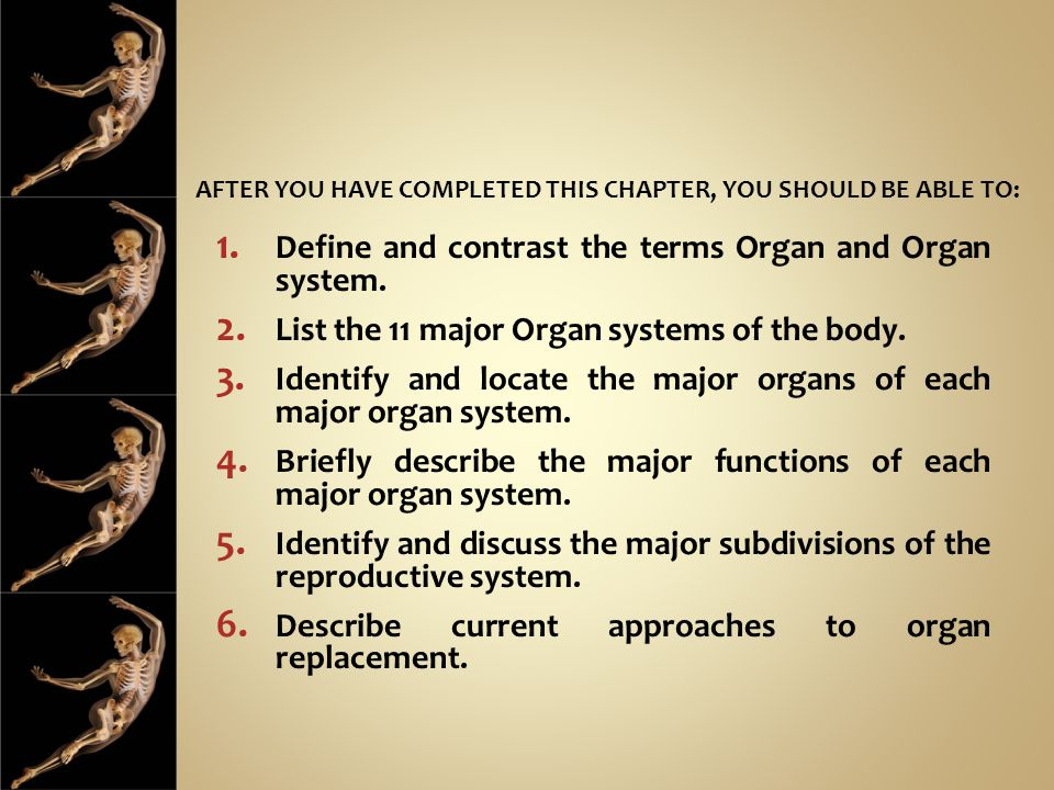 Define and contrast the terms Organ and Organ system.