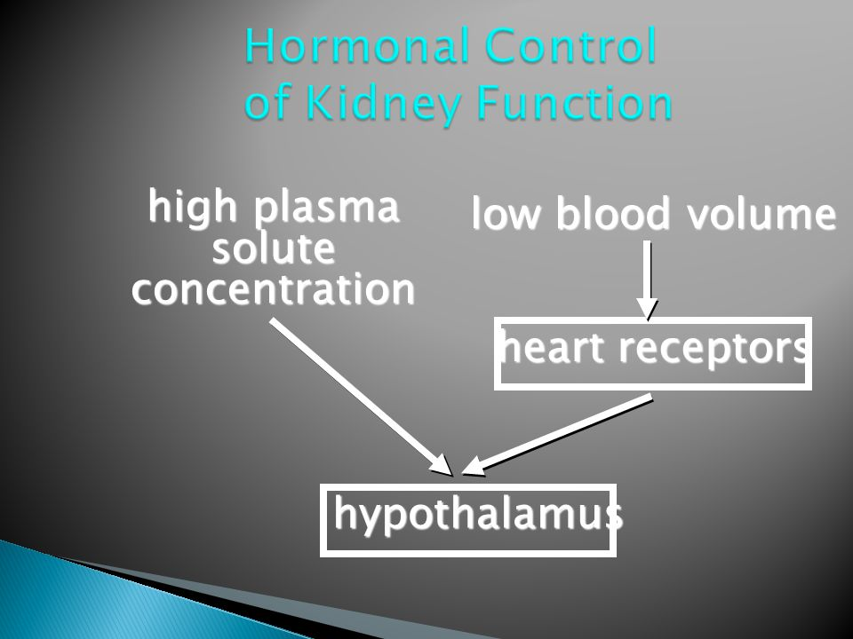 Hormonal Control of Kidney Function