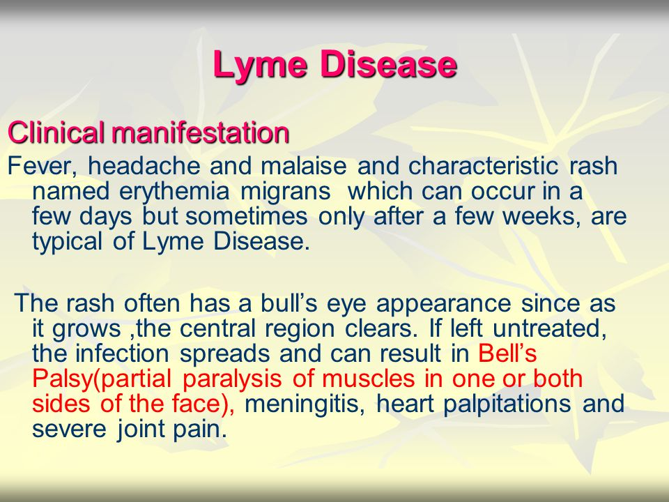 Lyme Disease Clinical manifestation