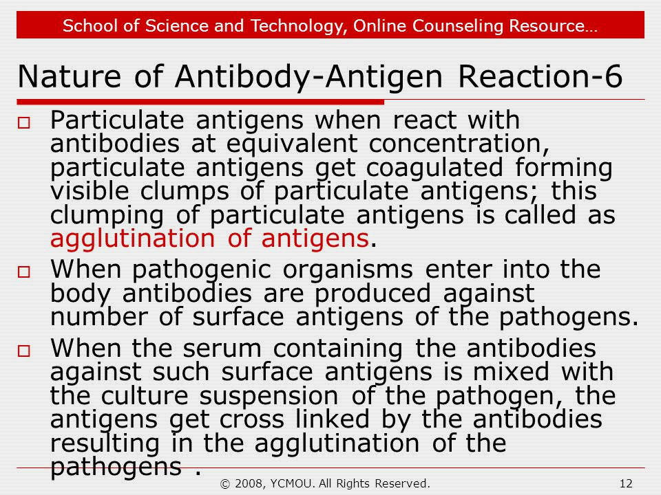 Nature of Antibody-Antigen Reaction-6