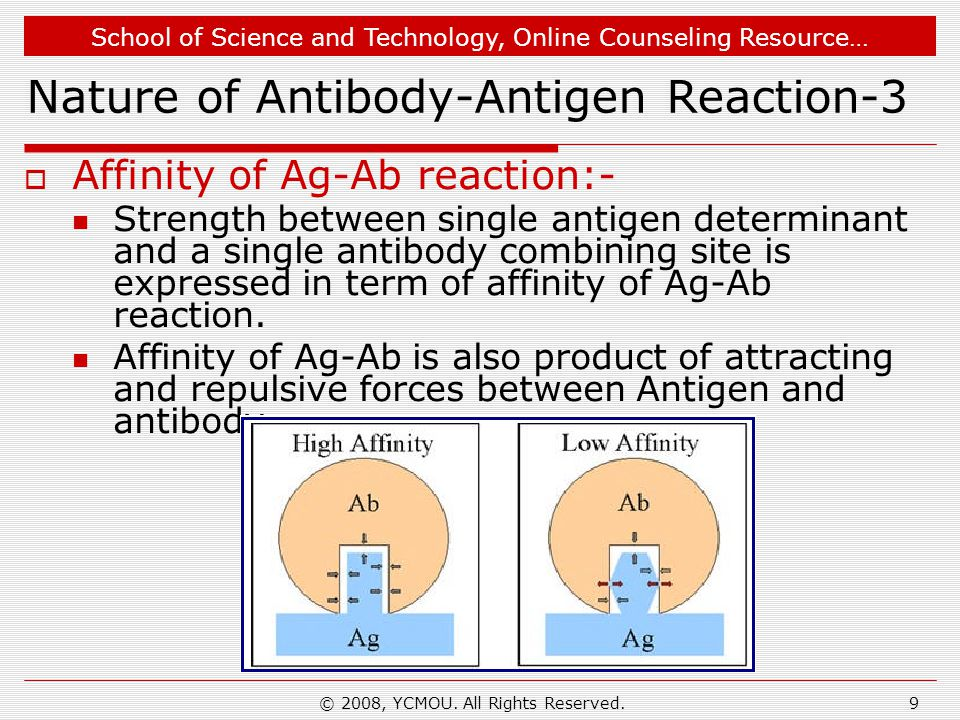 Nature of Antibody-Antigen Reaction-3
