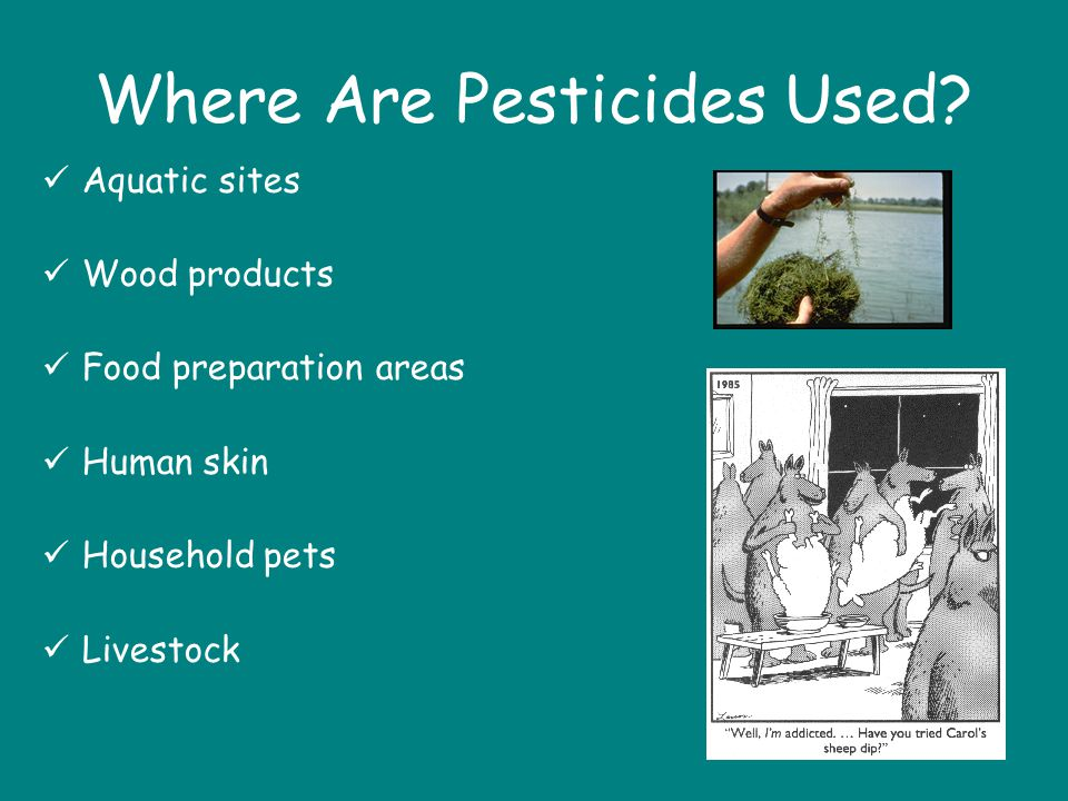 Where Are Pesticides Used
