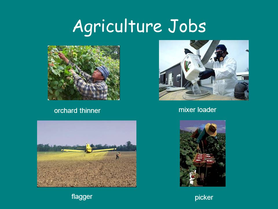Agriculture Jobs orchard thinner mixer loader flagger picker