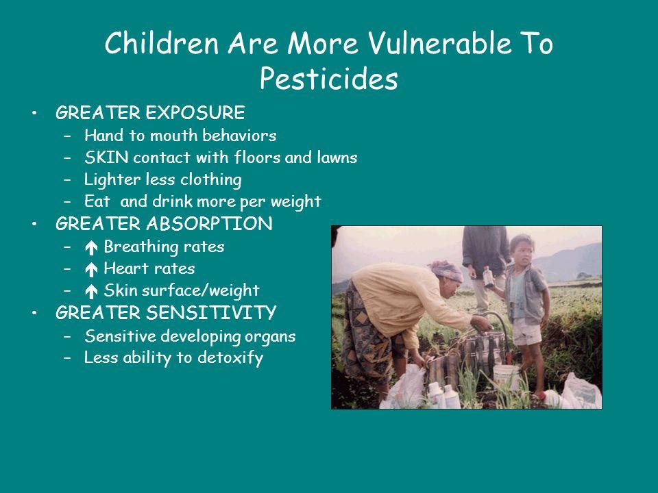 Children Are More Vulnerable To Pesticides